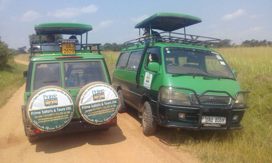 Safari tours in Uganda